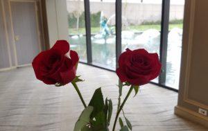 バラをもらいました!!